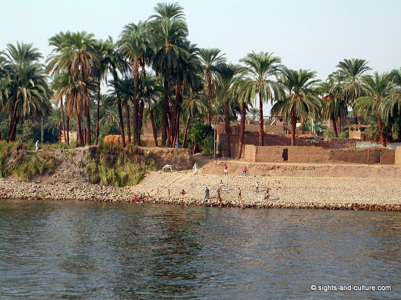 Cruise on the nile - river banks at luxor